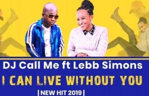 DJ Call Me - I Can Live Without You ft. Lebb Simons